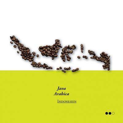 Java arabica